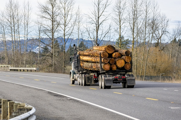 Large truck carrying logs